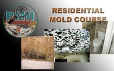 CRMI Mold Training