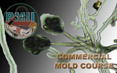 Mold Training Commercial