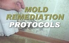 Mold Protocols Training