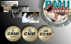 Mold Training Course Package